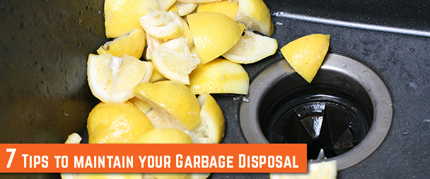 Tips to maintain your Garbage Disposal