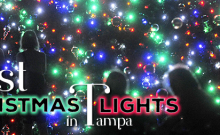 Christmas Lights in Tampa3