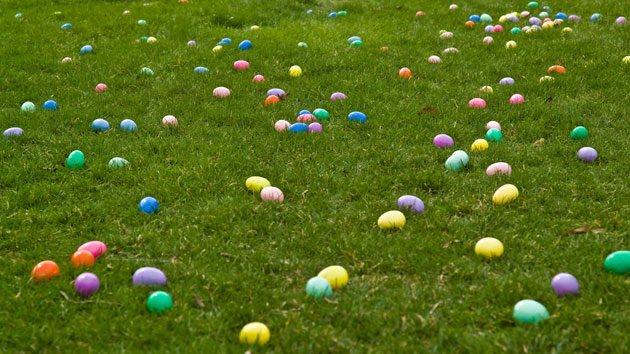 easter egg hunts near tampa