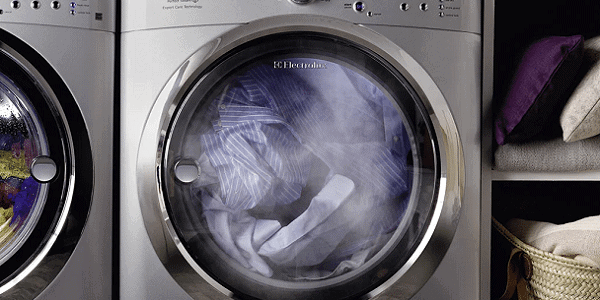 steam dryer pros and cons