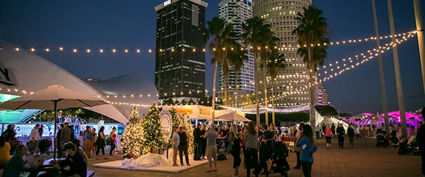 what to do with kids in Tampa this December
